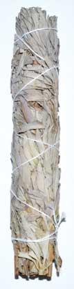 White Sage Smudge Stick 9